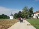 Засавица 2011